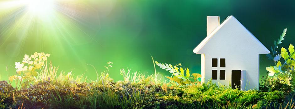 eco loft insulation
